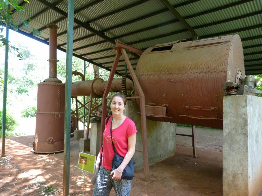 La machine pour préparer les grains de café à l'export